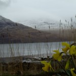 Isle of Mull Driest in UK